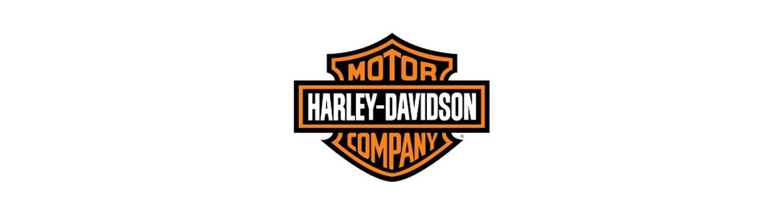 Negozio On Line di Adesivi Specifici per Harley