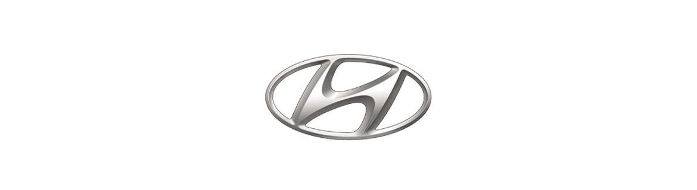 Negozio On Line di Adesivi Specifici per Hyundai