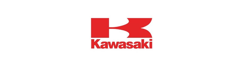 Negozio On Line di Adesivi Specifici per Kawasaki