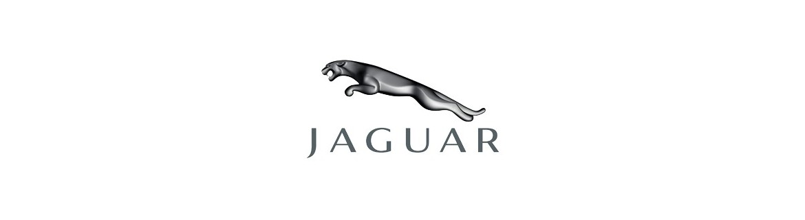 Negozio On Line di Adesivi Specifici per Jaguar