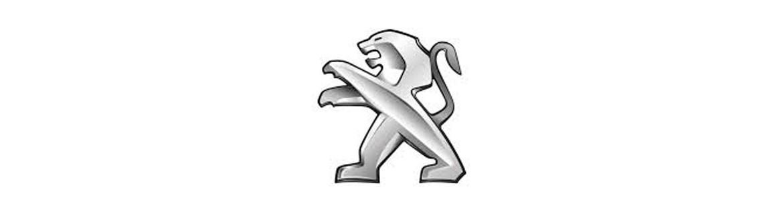 Negozio On Line di Adesivi Specifici per Peugeot