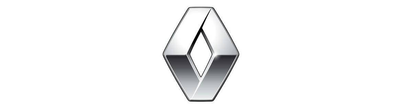 Negozio On Line di Adesivi Specifici per Renault
