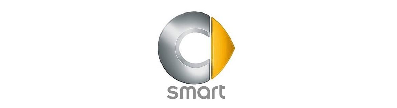 Negozio On Line di Adesivi Specifici per Smart