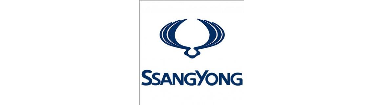 Pellicole Oscuranti Ssangyong Pre Tagliate a Misura Oscuramento Vetri